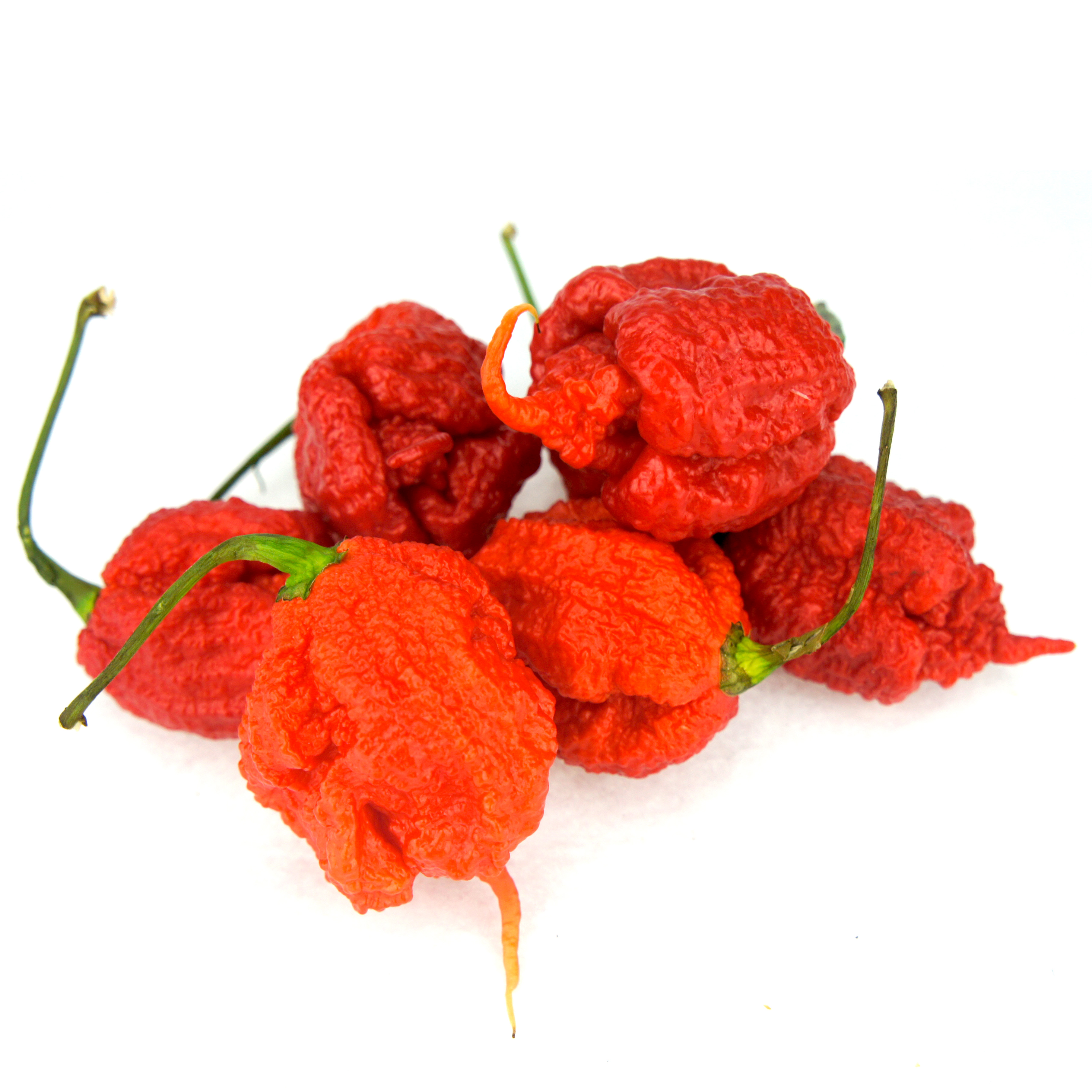 fireland foods carolina reaper chilisamen. Black Bedroom Furniture Sets. Home Design Ideas